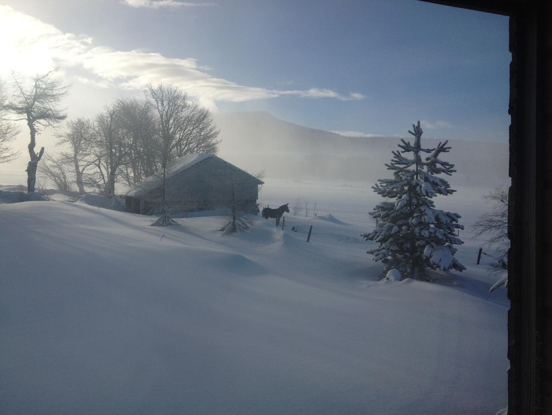 ane-neige-2014